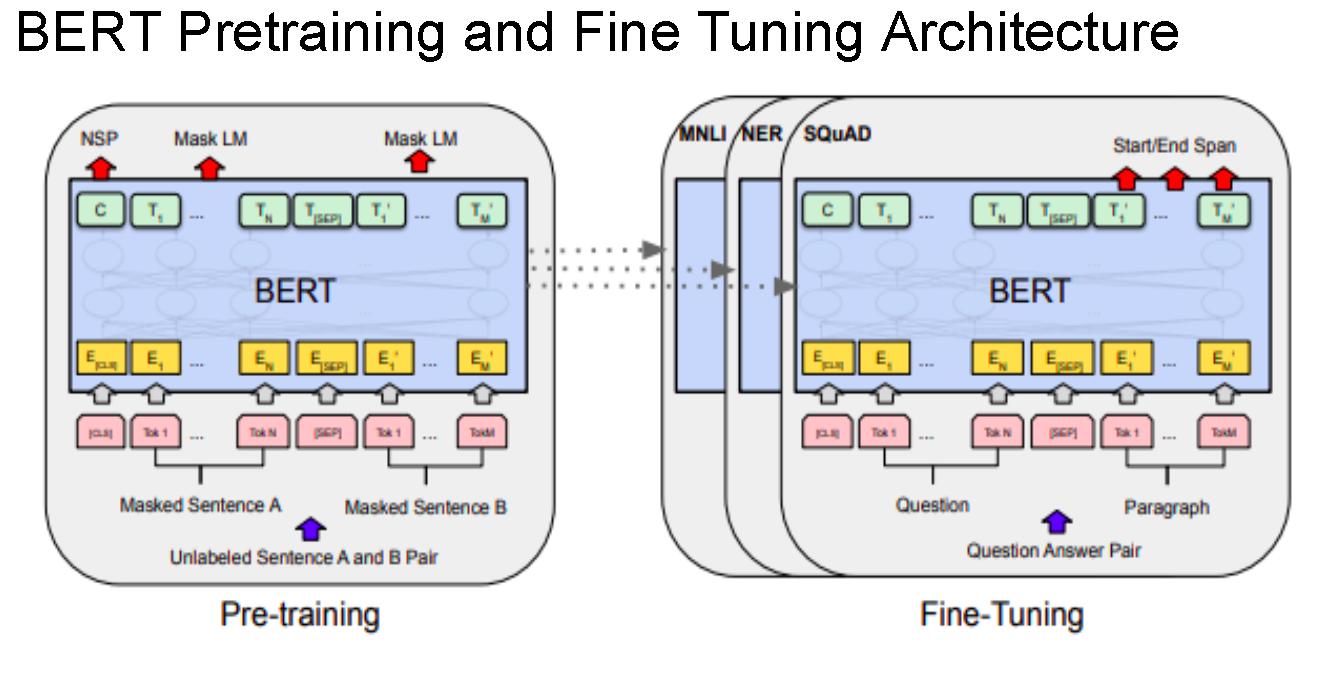 BERT: Bidirectional Encoder Representation from Transformer